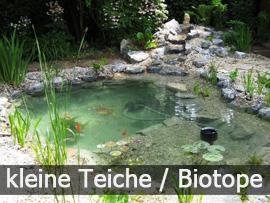 Kleine Teiche und Biotope | Bavaria Teichbau