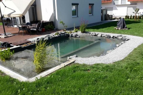 bavariateichbau_livingpool-113