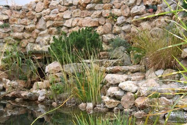 natursteinmauern-13