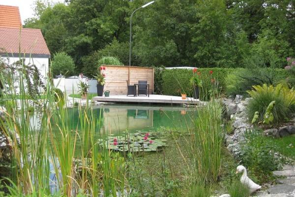 schwimmteich-bad-griesbach