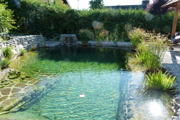 schwimmteich-dietfurt