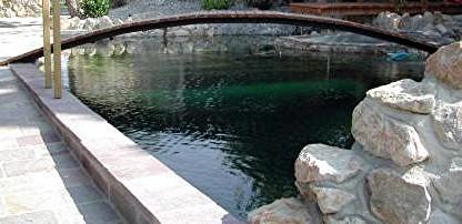 schwimmteich-freilassing