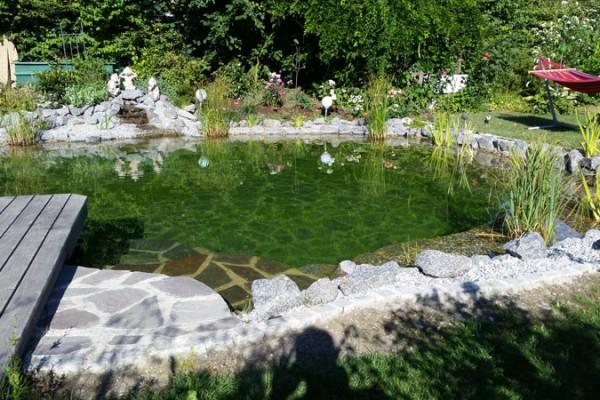 schwimmteich-freyung