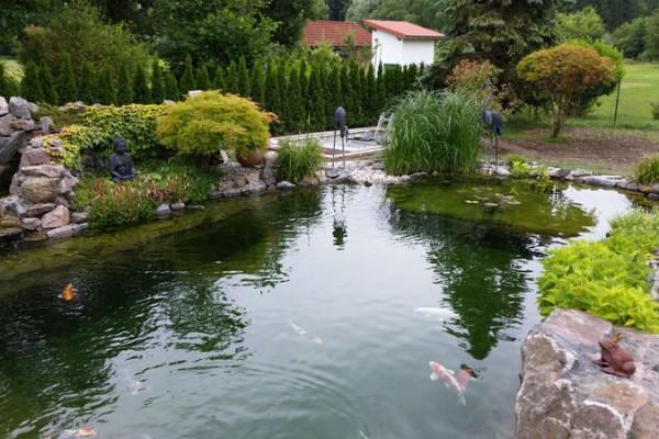 schwimmteich-germering