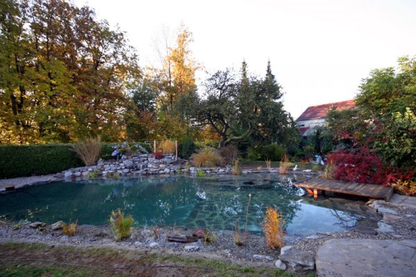 schwimmteich-landau-isar