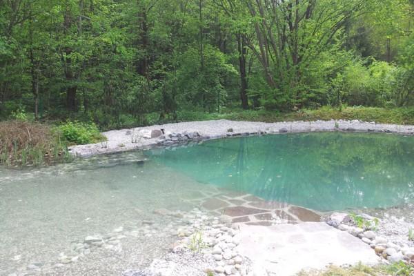 schwimmteich-osterhofen