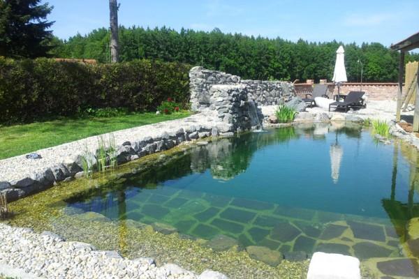 schwimmteich-regensburg