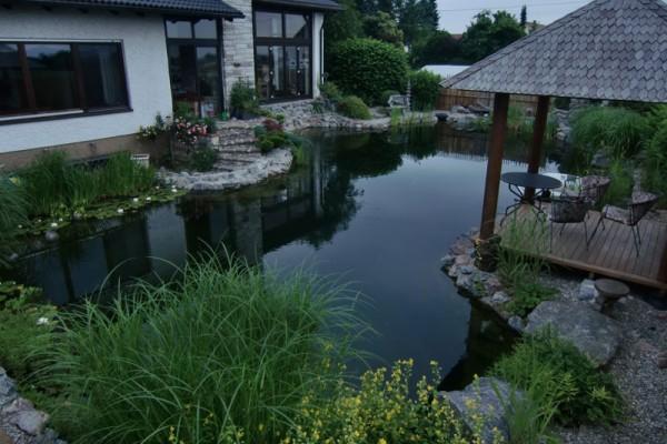 schwimmteich-unterschleissheim