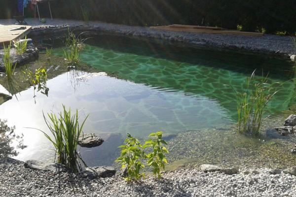 schwimmteich-waldkirchen