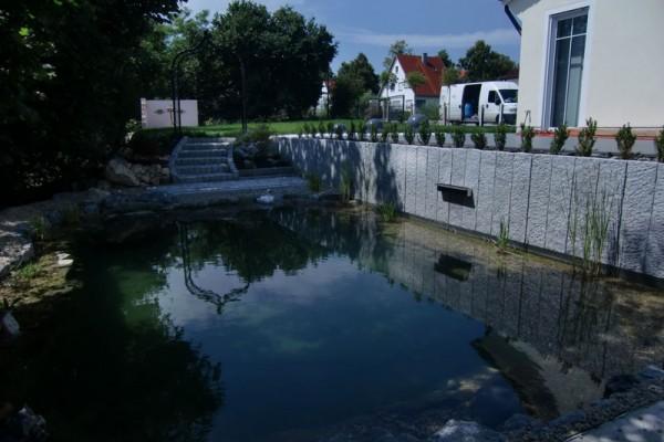 schwimmteich-wasserburg