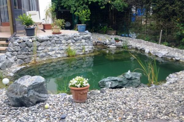 schwimmteich-woerth-donau