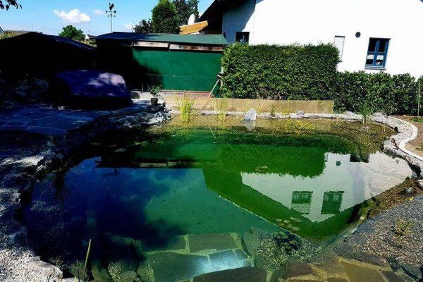 schwimmteiche-allach-3