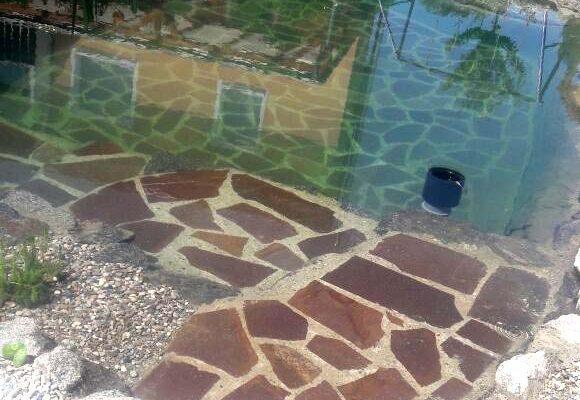 schwimmteiche-dachau-4