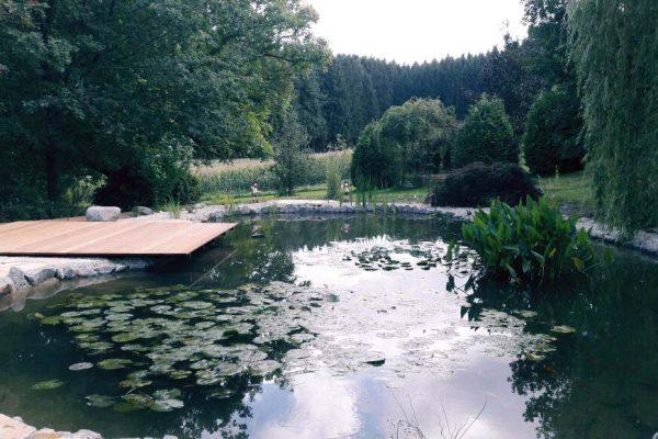 schwimmteiche-dachau-7