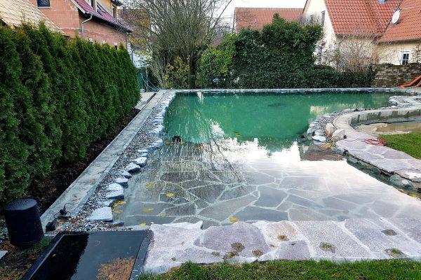 schwimmteiche-dachau-9
