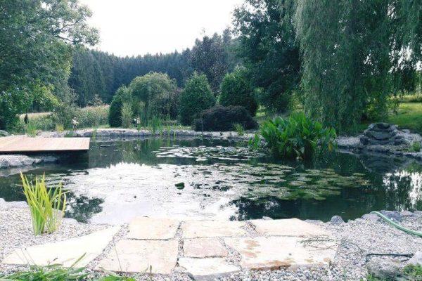 schwimmteiche-odelzhausen-2