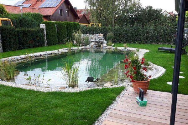 schwimmteiche-odelzhausen-3